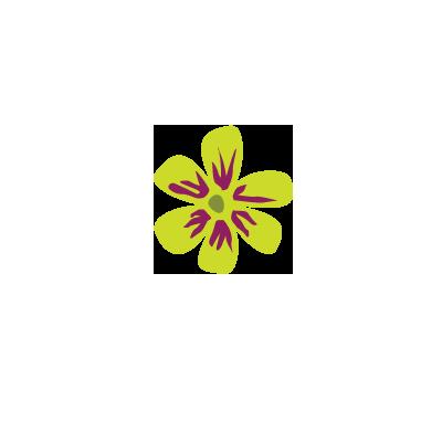 Flower 2 (+2,00 €)